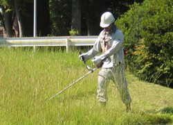 芝刈り 草刈り